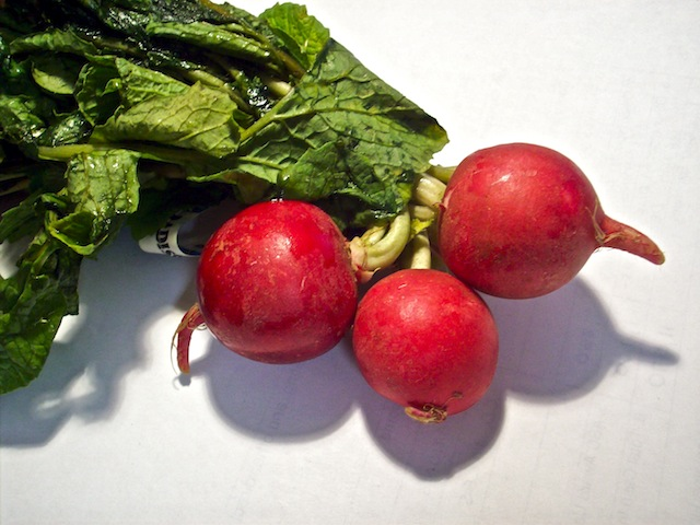 A bunch of radishes (Eat Me. Drink Me.)