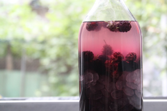 Mulberry liqueur (Eat Me. Drink Me.)