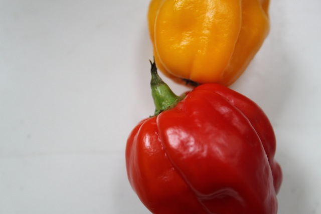 spicy habaneros (Eat Me. Drink Me.)