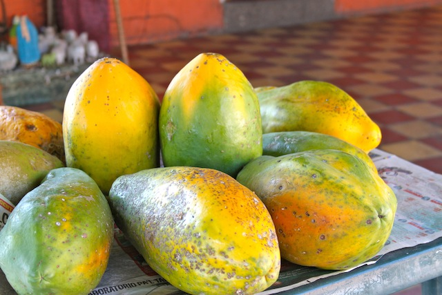 Colombian Papaya (Eat Me. Drink Me)