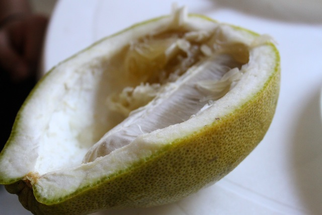 Colombian Pomelo (Eat Me. Drink Me)