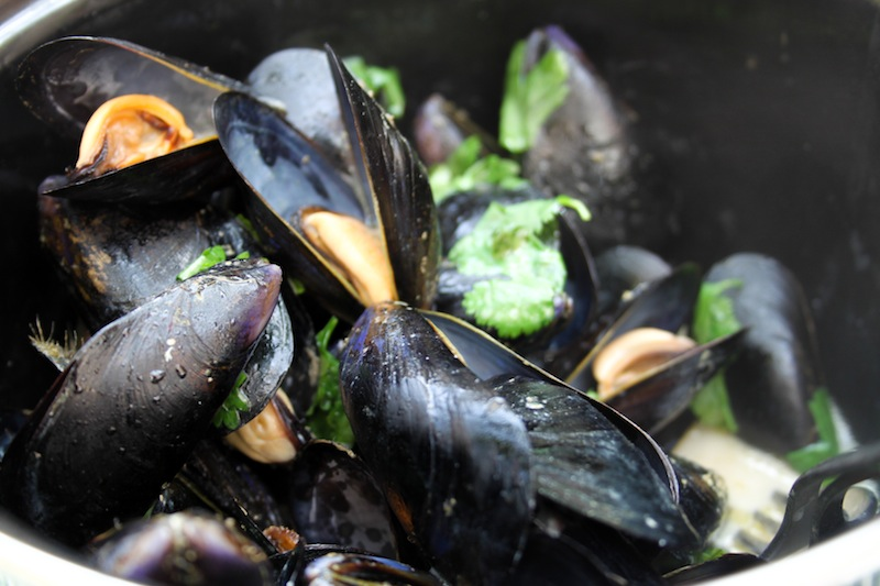 Fresh mussels (Eat Me. Drink Me.)