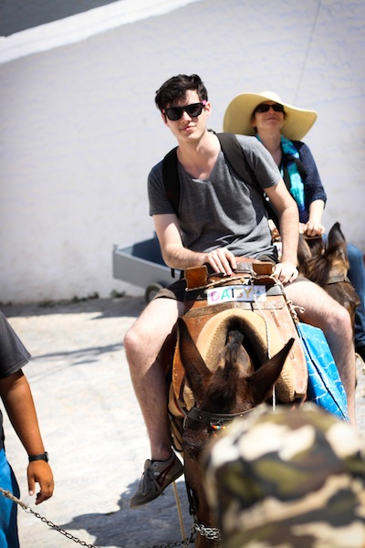 Riding donkeys (Eat Me. Drink Me.)