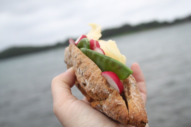 Cheese, radish, and snow pea sandwich (Eat Me. Drink Me.)