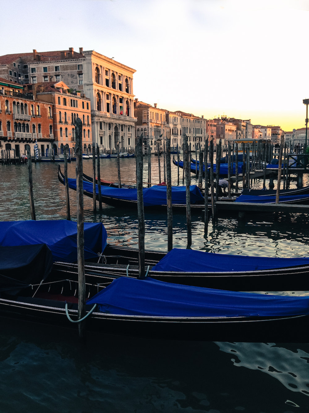 A lineup of gondolas (Eat Me. Drink Me.)