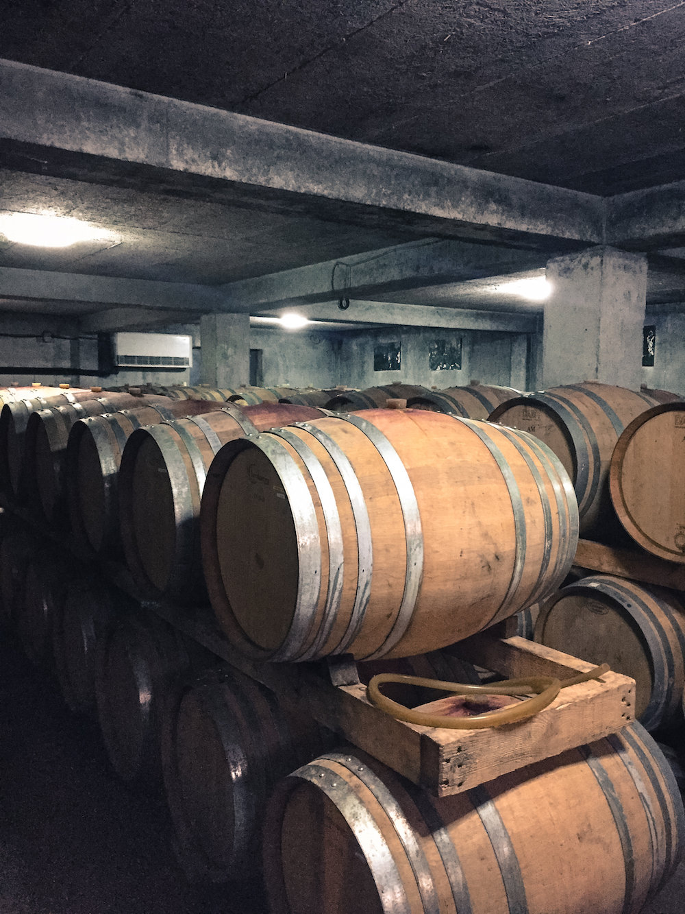 Barrels in the wine cellar (Eat Me. Drink Me.)