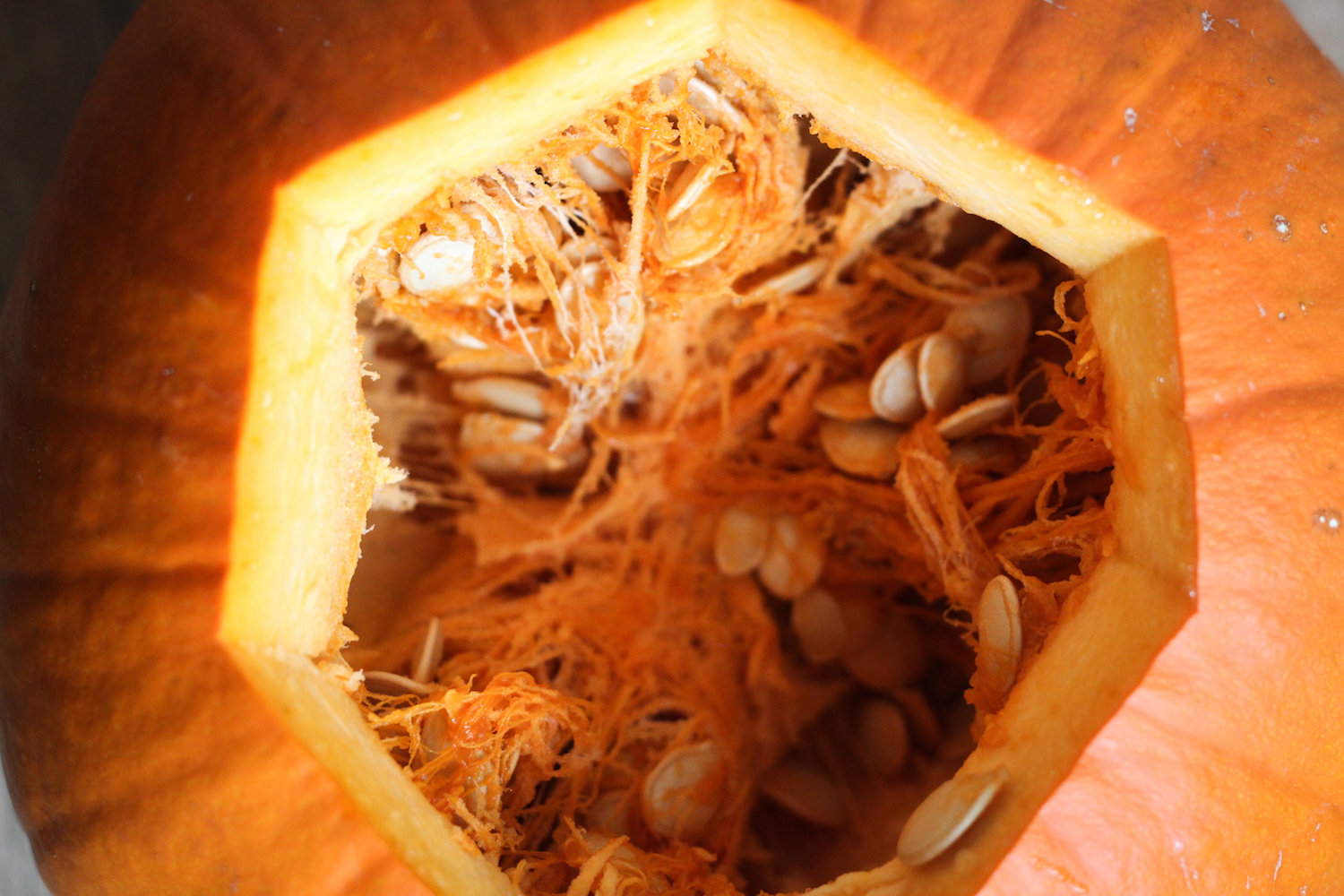 The gaping maw of a pumpkin (Eat Me. Drink Me.)