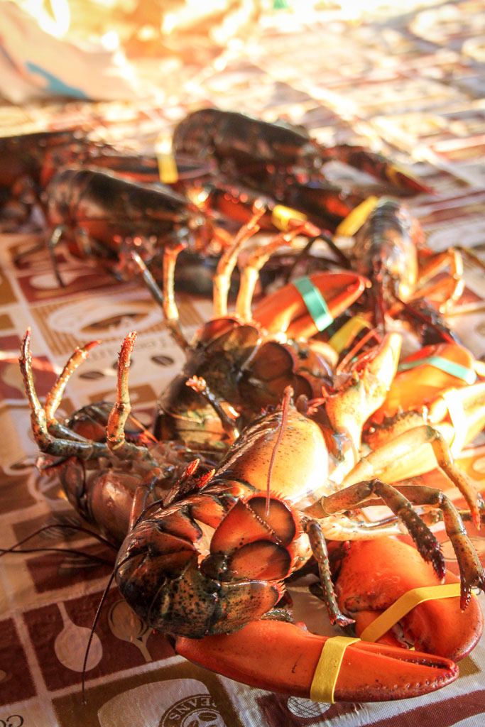 A pile of live lobsters (Eat Me. Drink Me.)