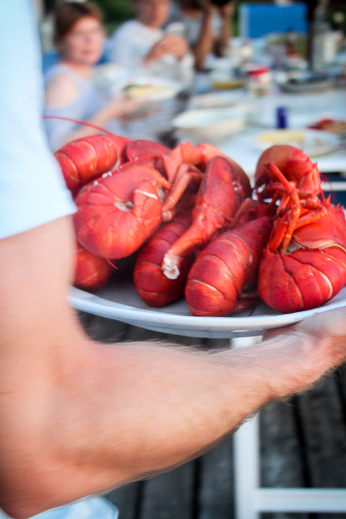 Platter of boiled Maine lobster (Eat Me. Drink Me.)