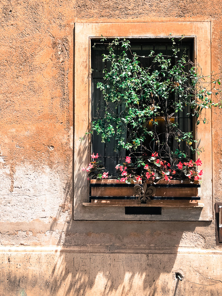 Window flowers, Rome (Photo courtesy of Counter Service)