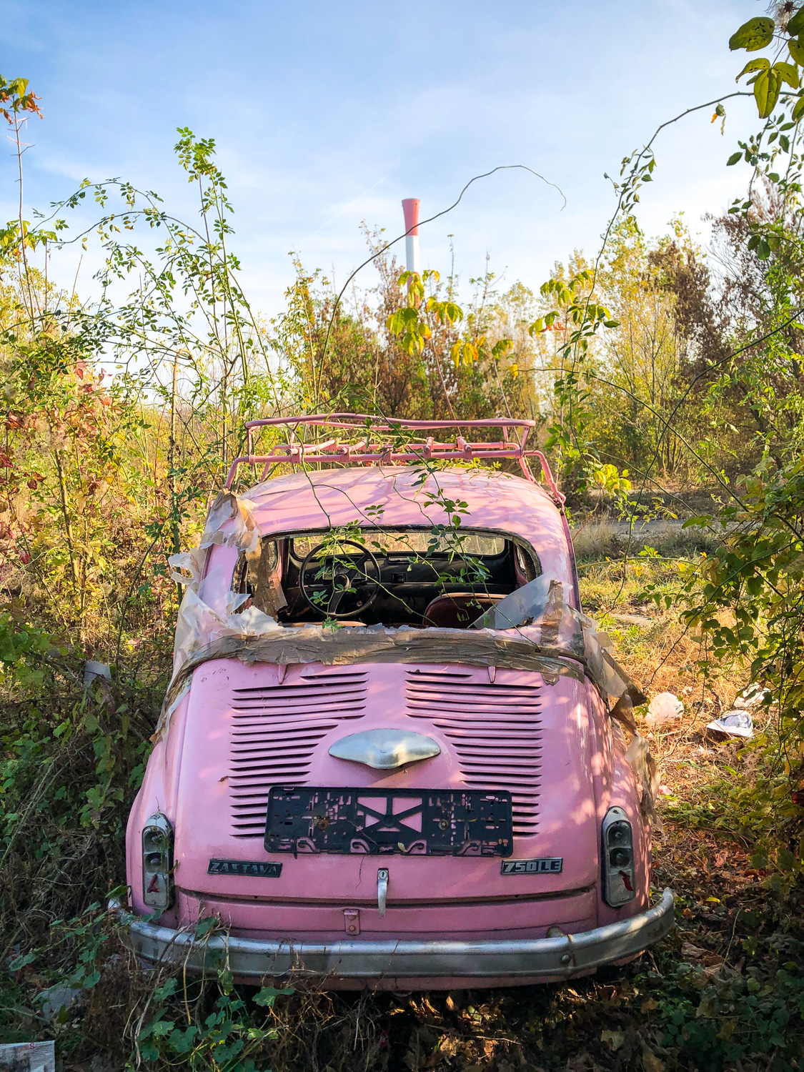 Abandoned car (Eat Me. Drink Me.)