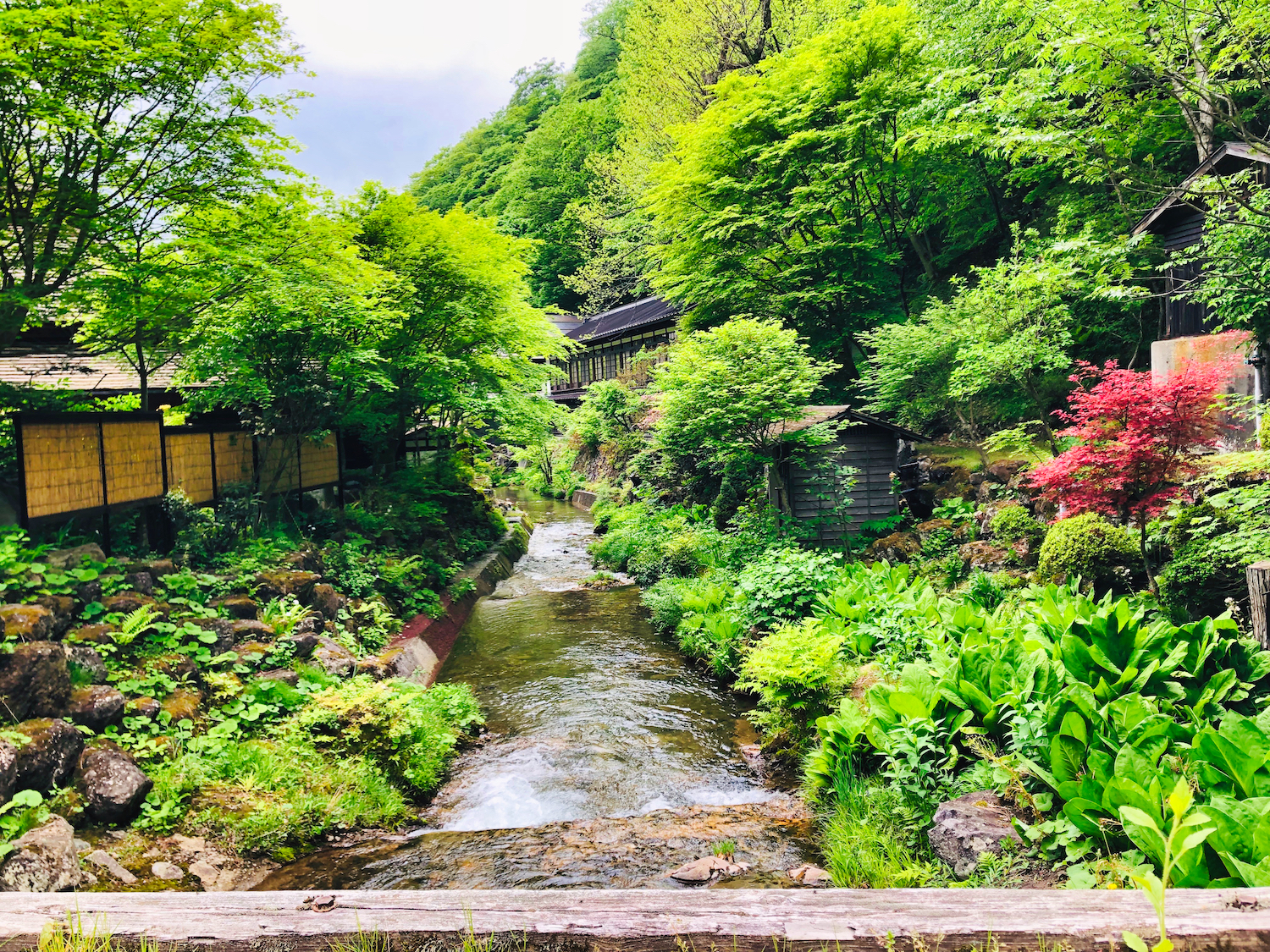 The grounds at Hoshi Onsen, Japan (Eat Me. Drink Me.)